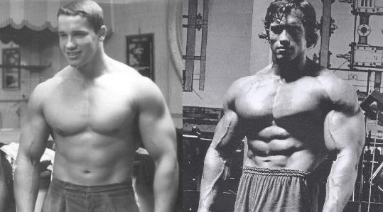 arnold-dianabol