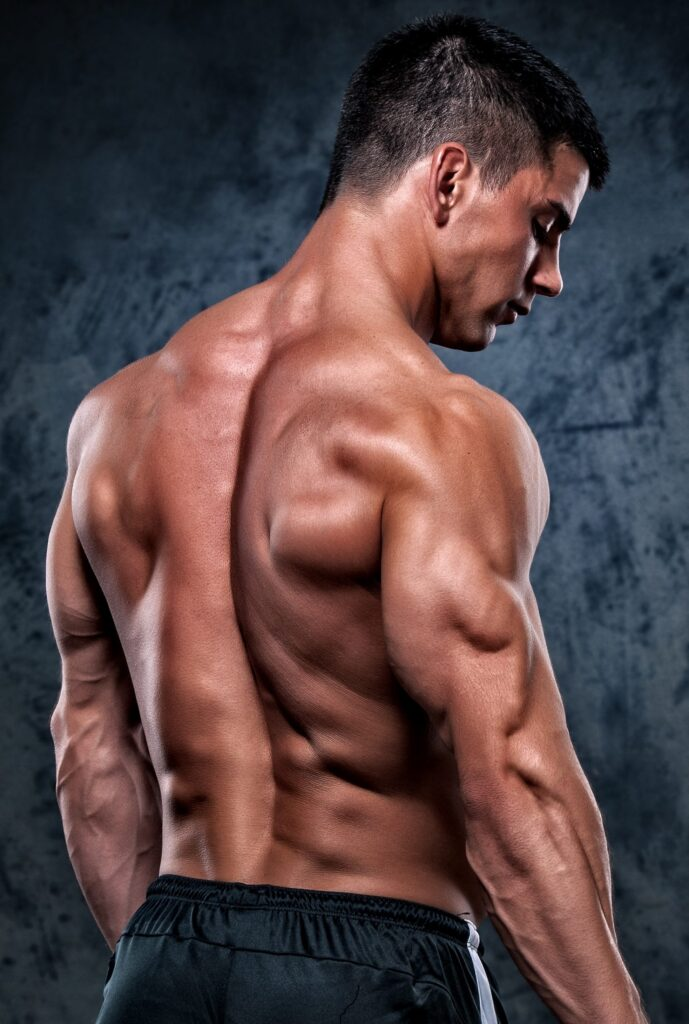 muscular-man-from-back-dianabol