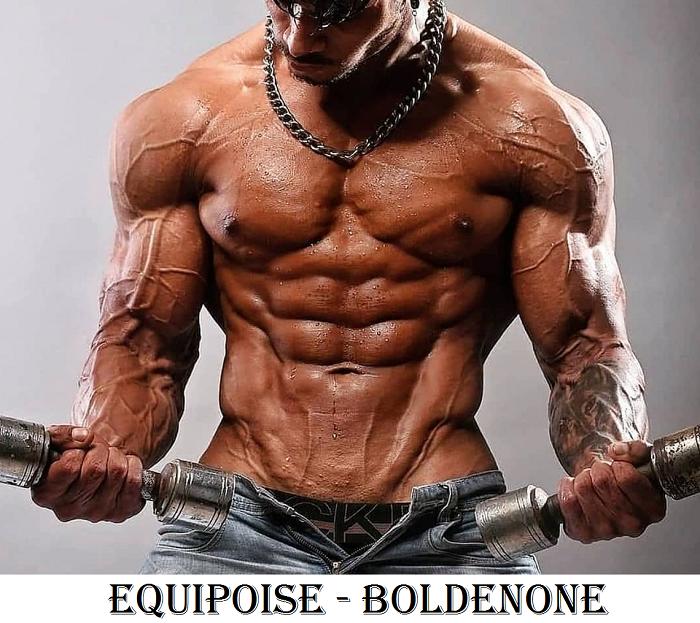 Equipoise–Boldenone