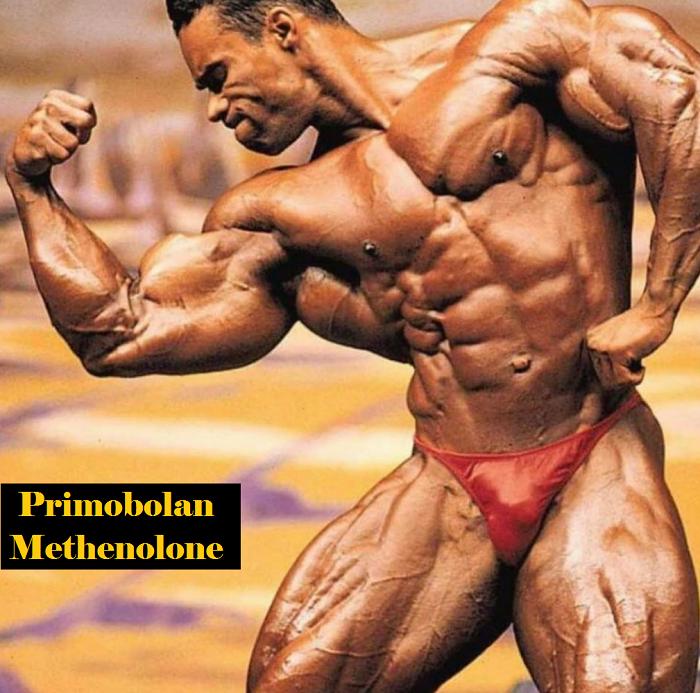 Primobolan-Methenolone-landofmarbles